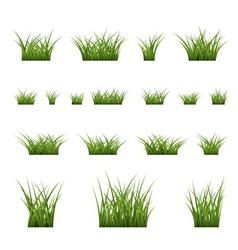 green grass bushes set vector image