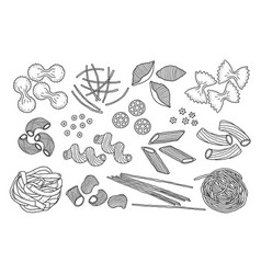 hand drawn pasta vector image