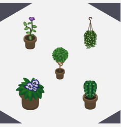 Isometric flower set of blossom peyote flower vector