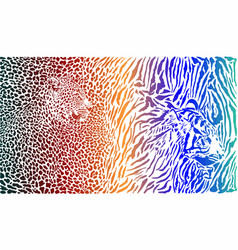 leopard and tiger and color pattern background vector image