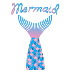 mermaid tail vector image
