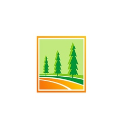 pine tree green hill logo vector image