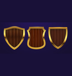 realistic shields medieval shields with vector image
