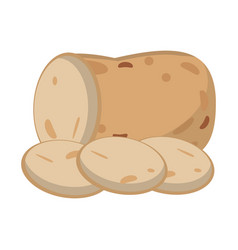 slice potato food healthy image vector image