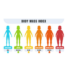 woman bmi body mass index infographic for people vector image