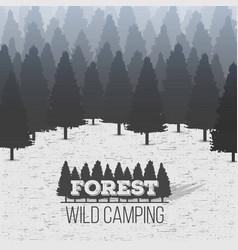 creative of wild coniferous vector image