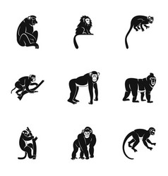 Different monkey icon set simple style vector