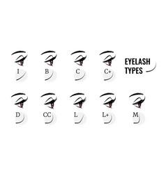 Eyelash types curved female eyelashes extension vector