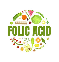 folic acid banner template healthy vitamin food vector image