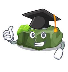 Graduation cartoon moss grow on sea rock vector