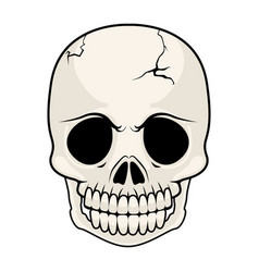 isolated cracked skull image vector image