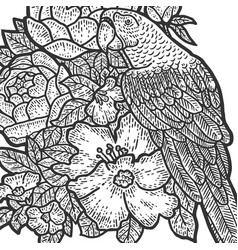 Parrot in flowers coloring page sketch scratch vector