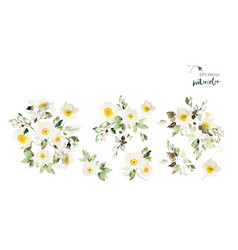 Set watercolor elements with flowers anemone vector