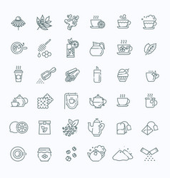 Tea icon set thin line vector