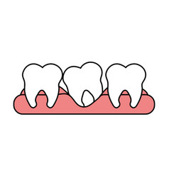 Color silhouette cartoon set tooth in gum vector