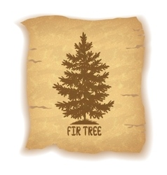 Christmas fir tree on old paper vector