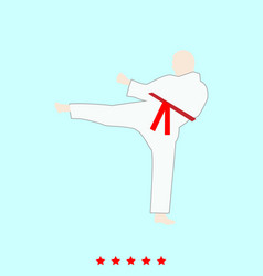 karate man set it is color icon vector image