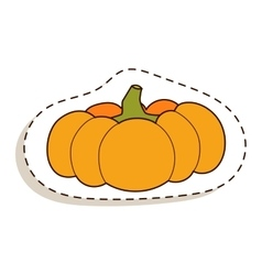 Pumpkin isolated vector image vector image