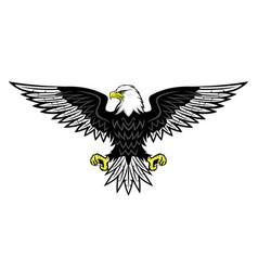 bald eagle icon vector image