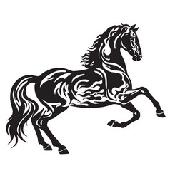 Black horse tattoo vector