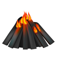 burning fire icon realistic style vector image
