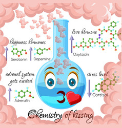 chemistry of kissing cartoon style infographics vector image
