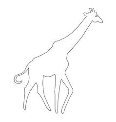 Giraffe outline icon vector