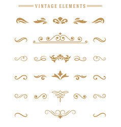 Vintage ornaments set floral elements for design vector