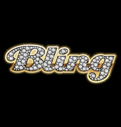 bling bling style vector image