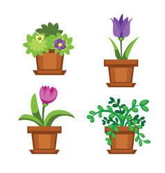 cartoon garden and houseplants vector image vector image