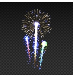 Festive patterned fireworks isolated bursting in vector image