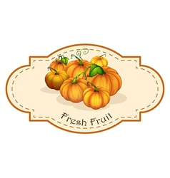 A fresh fruit label with squash vector image