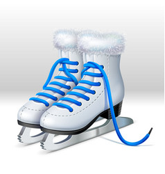 A pair of ice skates vector