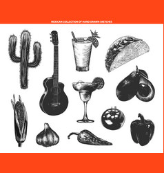engraved vintage style mexican collection vector image