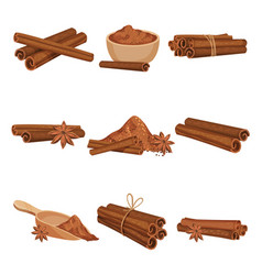Flat set of rolled cinnamon sticks and vector