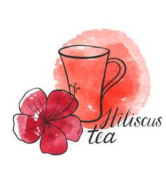 Hibiscus tea vector