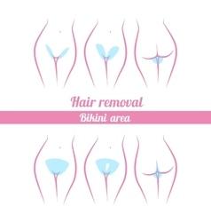 Scheme of hair removal bikini area vector