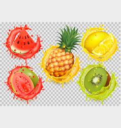 Set fruit juice splash watermelon citron vector