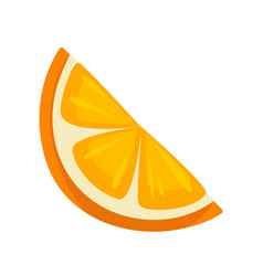 Small slice of orange vector