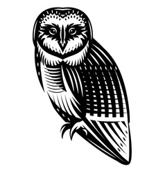 stylish northern owl side view monochrome vector image