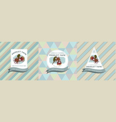 Three colored labels with feijoa vector