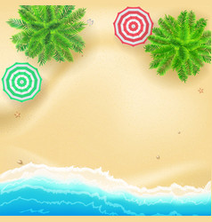 tropical landscape with blue sea starfish vector image