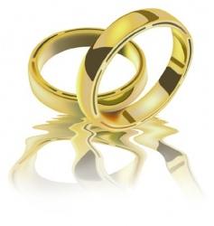 Two wedding rings vector