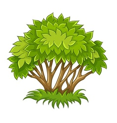 Bush with green leaves vector image vector image