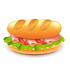 French sandwich isolated on white vector image vector image