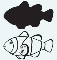 Tropical reef fish vector image