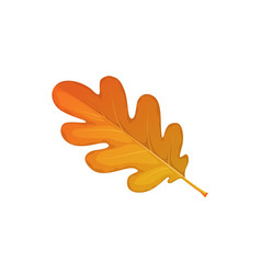 Autumn oak leaf icon cartoon foliage sign vector