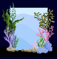 Beautiful underwater scene with seaweed marine vector