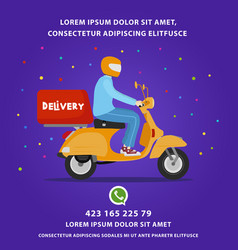delivery template instagram vector image