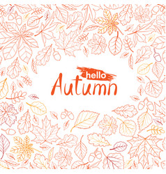 fall leaf nature pattern with lettering hello vector image